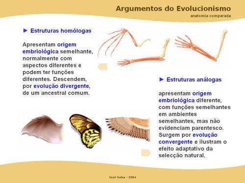 Biologia 11º